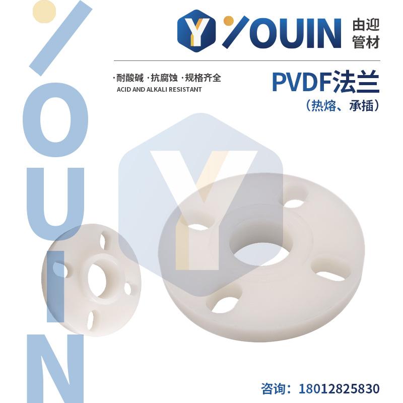 PVDF法兰(热熔、承插)