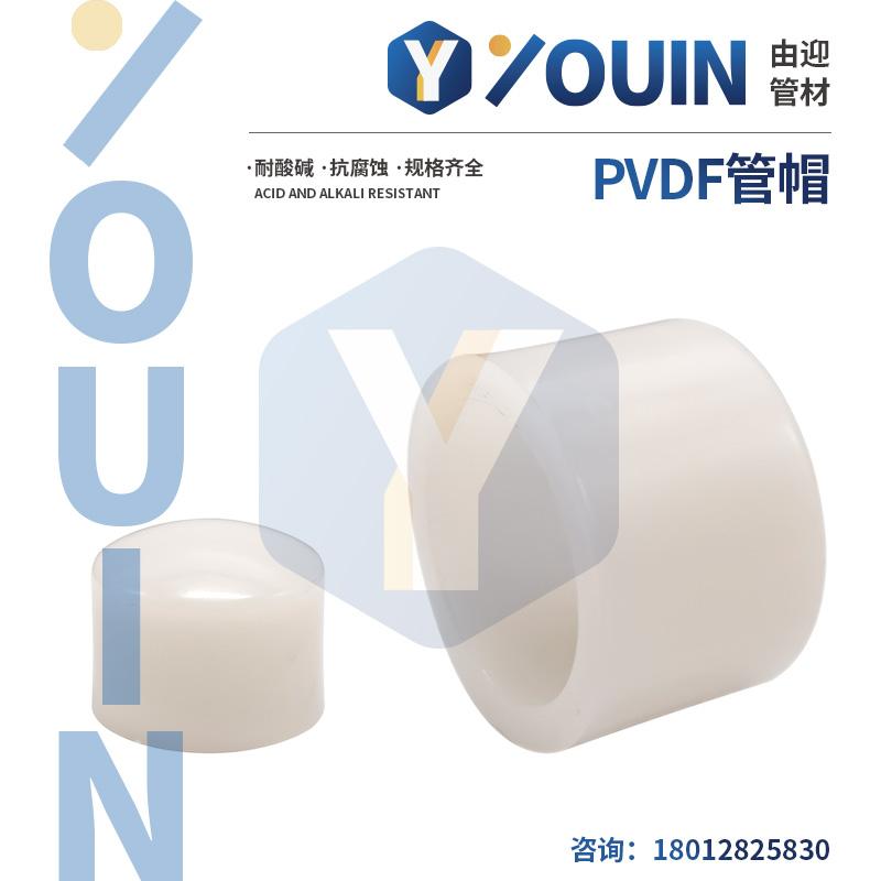 PVDF管帽
